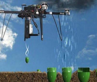Drones para Salvar Bosques